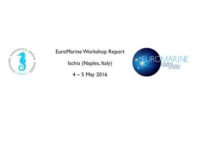 Management of Bioinvasions in the Mediterranean Sea:  The Way Forward